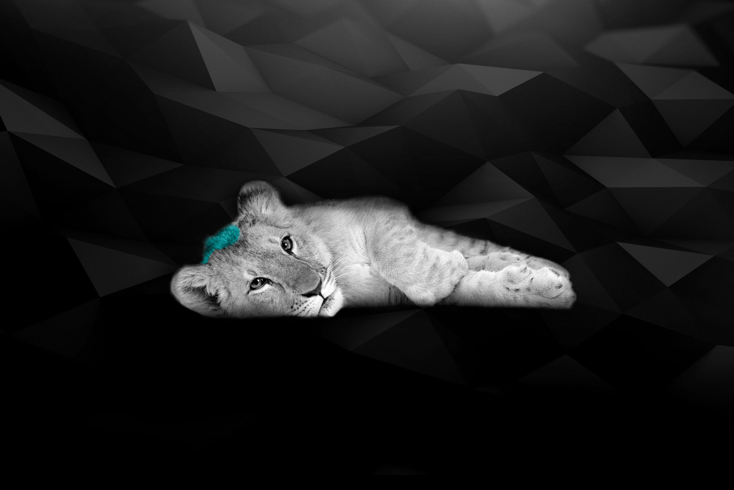myAgency-Jobs-background lion